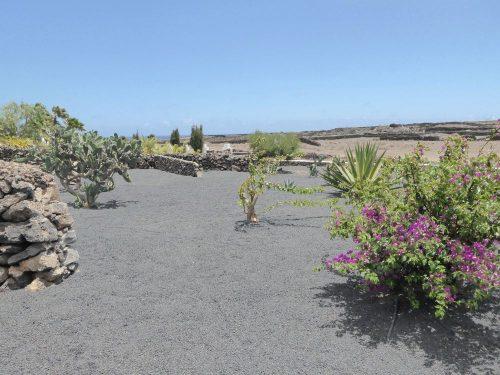 Lanzarote Ferienhaus Miramar Casa Garten
