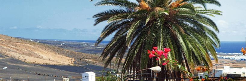 Lanzarote Ferienwohnung El Patio Meerblick